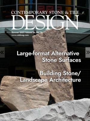 CSTD Summer 2021 Cover