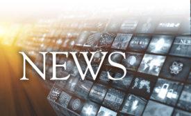 cstd news