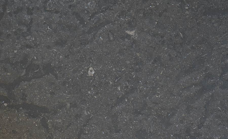 Stone of the Month: Champlain Black marble