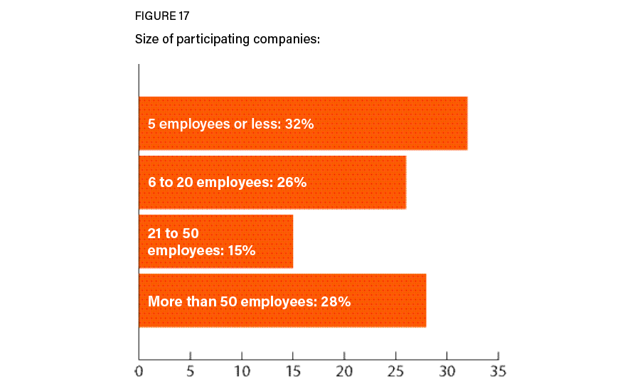 Figure 17: Company sizes