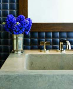 SINK AND BLUE FLOWERS